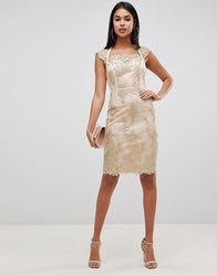 Lipsy Embroidered Midi Pencil Dress With Cap Sleeve In Gold Gold