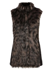 Coast Petersburg Faux Fur Gilet Black