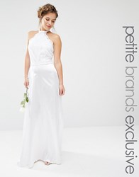 John Zack Petite Bridal Maxi Halter Dress With Lace Bodice And Sateen Skirt White