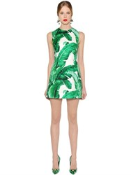 Dolce And Gabbana Leaves Print Cotton Silk Brocade Dress