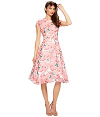 Unique Vintage Chiffon Dress Flamingo Women's Dress Pink