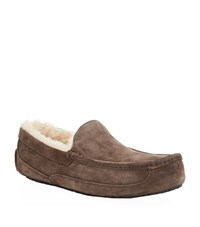 Ugg Australia Ascot Slipper Male