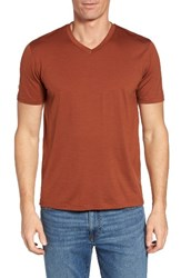 Ibex Men's 'Axis' V Neck Merino Wool Jersey T Shirt Zion