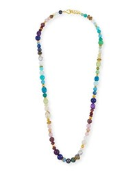 Dina Mackney Long Rainbow Beaded Necklace 36 Multi