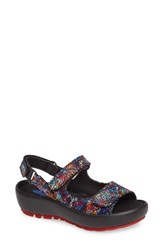 Wolky Women's Rio Sandal Black Black Leather