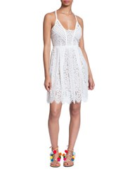 Plenty By Tracy Reese Directional Lace Fit And Flare Dress Bleach