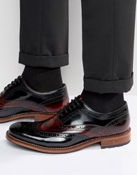 Ted Baker Krelly High Shine Oxford Brogue Shoes Red