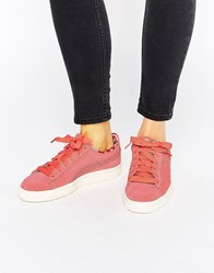Puma X Careaux Coral Suede Basket Trainers With Rose Logo Pink