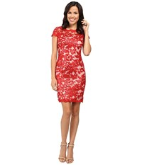 Calvin Klein Short Sleeve Lace Sequin Sheath Dress Cd6b1x6r Fire Women's Dress Red
