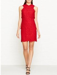Reiss Sophia Lace Overlay Dress Red