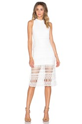 Endless Rose Crochet Dress White