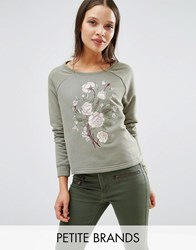 New Look Petite Embroidered Sweatshirt Jumper Khaki Green