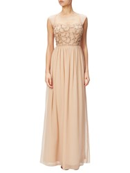 Adrianna Papell Petite Cap Sleeve Beaded Bodice Chiffon Gown Champagne