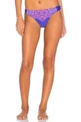 Ella Moss Fez Retro Bikini Bottom Purple