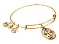 Alex And Ani Key To Life Charm Bangle Rafaelian Gold Bracelet