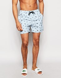 D Struct Jellyfish Swim Shorts In Blue Blue