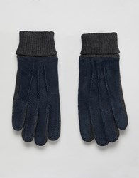 Dents Kendal Suede Gloves With Knitted Cuff Navy