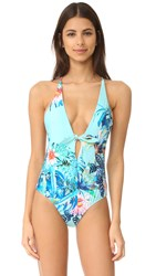 6 Shore Road Palacial Swimsuit Amazon Floral