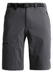 The North Face Speedlight Sports Shorts Asphalt Grey Anthracite
