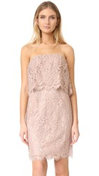Bb Dakota Sakura Strapless Lace Dress Blush