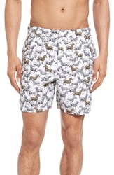 Original Penguin Men's Zebra Fixed Volley Swim Trunks