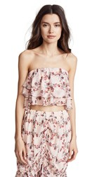 e0c09a5515 Endless Rose Ruffled Fence Crop Top Fence Of Roses