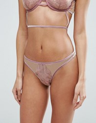 Asos Arielle Trapped Lace Velvet Trim Thong Antique Rose Red