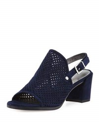 Stuart Weitzman Popular Perforated Suede Slingback Sandal Blue