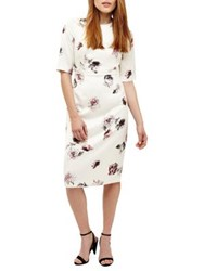 Phase Eight Olga Rose Print Sheath Dress Buttermilk