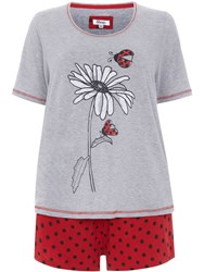 Evans Plus Size Ladybird Print Short Pj Set Grey