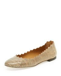 Chloe Scalloped Snake Ballerina Flat Medium Beige