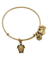 Alex And Ani Sea Turtle Expandable Wire Bangle Charity By Design Collection Rafaelian Gold