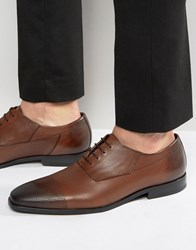 Hugo By Boss Square Oxford Diamond Toe Cap Derby Shoes Tan