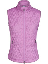 Daily Sports Club Wind Gilet Pink