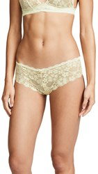 Honeydew Intimates Camellia Lace Hipster Cream