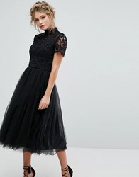 Chi Chi London High Neck Lace Midi Dress With Tulle Skirt Black