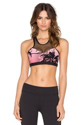 Trina Turk Palm Beach Sports Bra Black
