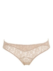 Morgan Lane Scarlett Lace Brief