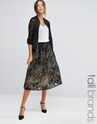 Little Mistress Tall Full Lace Midi Skirt Black Multi