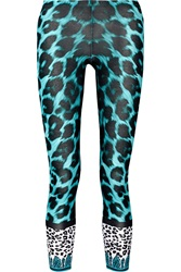 Versus Leopard Print Stretch Cotton Leggings