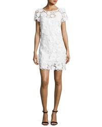 Milly Chloe Short Sleeve 3D Floral Embroidered Lace Dress White
