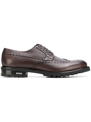 Baldinini Perforated Lace Up Brogues Brown