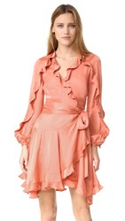 Zimmermann Winsome Flutter Robe Dress Guava