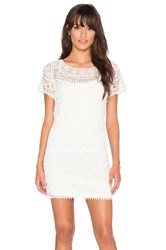 Liv Lucy Lace Tunic Ivory