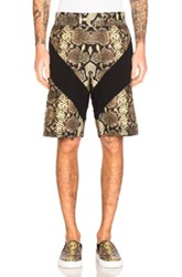 Givenchy Snake Print Bermuda Shorts In Animal Print Yellow Brown Animal Print Yellow Brown