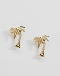 Asos Limited Edition Palm Tree Stud Earrings Gold