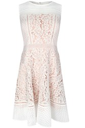 Glamorous Lace Skater Dress White