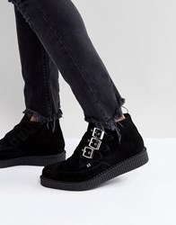 T.U.K Triple Buckle Suede Creeper Boots Black