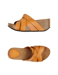 Scholl Sandals Brown