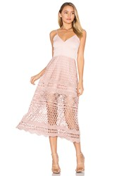 Karina Grimaldi Alice Crochet Dress Pink